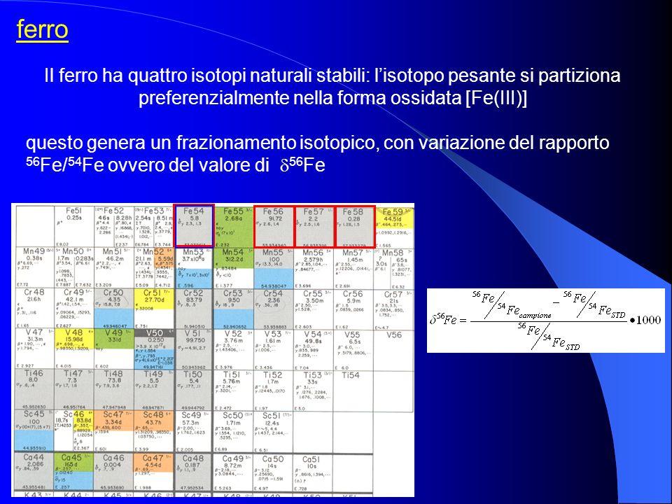 preferenzialmente nella forma ossidata [Fe(III)]
